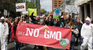 Victory: Senate to Kill Monsanto Protection Act Amid Outrage