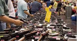 US Senate Says Right to Keep & Bear Arms is Debatable