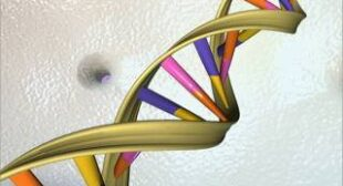 Scientists discover secret code hidden within human DNA