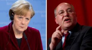"""They are fascists!""€™ German Left leader blasts Merkel's support of illegitimate Ukraine govt"
