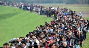 IMF's Prescription for Europe: Exploit Refugees with Low Wages
