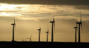 Renewable Windfall as Germany's Green Energy Meets 90 Percent of Demand