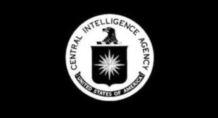 Rogue Elephant Rising: The CIA as Kingslayer