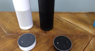 Amazon Echo shuts down over CIA connection query (VIDEO)