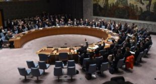 Syria Expects Positive Shift in UN Security Council Under Chinese Presidency