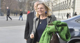 'Well-Known EU Critic': Meet Karin Kneissl, Austria's Future FM