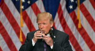 US world approval rating plummets to a 10-year-low – poll