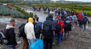 Hungary Unlikely to Abandon Tough Stance on Migration Despite EU Pressure – MP