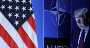If Trump continues pushing Europeans, it would bring an end to NATO – Wimmer