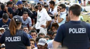 Austria Plans to Ban Knives for Asylum Seekers