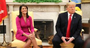 Trump accepts Nikki Haley's surprise resignation as UN ambassador