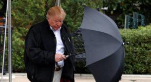 Umbrella troubles? Twitter mocks Trump as he bails on WWI commemoration over light rain