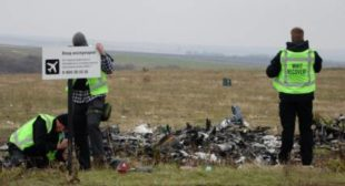 German Detective to Reveal Evidence on MH17 Crash if JIT Confirms Participation in Procedure