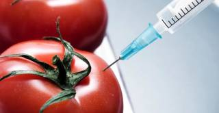"USDA Now Considers GMO Contamination ""€˜Normal""€™"