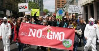 Victory: Senate to Kill Monsanto Protection Act Amid Outrage