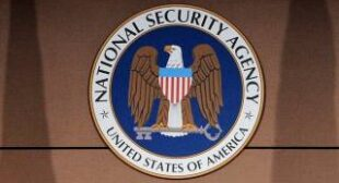 "Obama's ""independent"" NSA review board staffed with administration insiders"