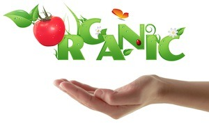 6 Health Benefits of Eating Organic Food – Global Healing Center