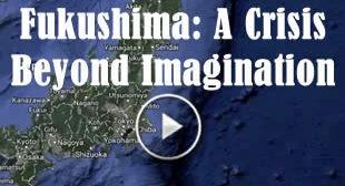 ☢ Fukushima: Beyond Urgent ☢