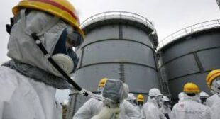 """Japan too proud to ask for Fukushima foreign help"""