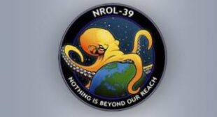 """Nothing is beyond our reach""€™: Evil octopus strangling the world becomes latest US intelligence seal"