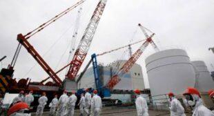 Fukushima water decontamination suspended indefinitely