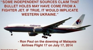 Government Likely Hiding Truth in Malaysia Airlines Flight 17 Crash – Ron Paul