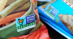 MEPs vote to allow national governments to opt of GM crops