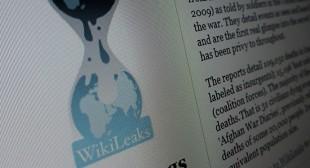 TiSA WikiLeaked: Winners & losers of multinational trade deal