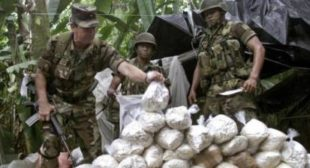 Ahead of UN Summit, Global Leaders Call for End to 'Disastrous' Drug War