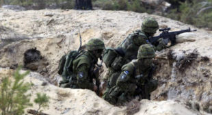 NATO exercises on Russian border: Are these people actually mad?