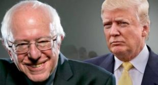Bernie Sanders Would Be Donald Trump's Worst Nightmare; Hillary, Not So Much