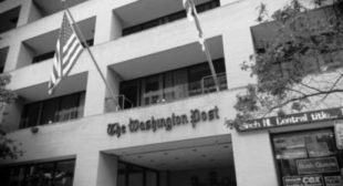 Washington Post Editors Caricature Jill Stein As 'Fairy Tale' Presidential Candidate