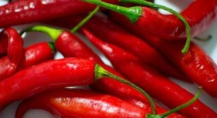 Red Hot Chili Peppers Could Hold Secret to Longer Lifetimes