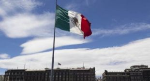 A Plea to Putin: Mexican Petition Demands Political Intervention of Russia