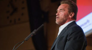 Revenge is Tweet: The Arnold Mocks The Donald's Low Ratings (VIDEO)