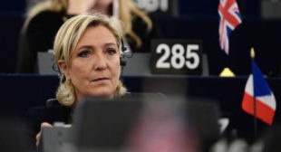 Stripping Le Pen of immunity 'EU is interfering in French internal affairs' – UKIP MEP