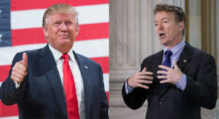 Rand Paul Urges Trump Not To Take Military Action In Syria » Alex Jones' Infowars: There's a war on for your mind!
