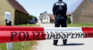 'Revenge motives': Immigrant killed elderly Austrian couple over alleged far-right links, police say