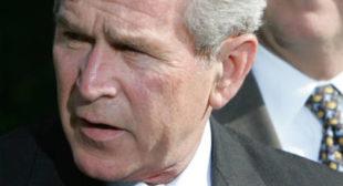 'Osama bin Laden Won' the War on Terror, Says Ex-CIA Analyst