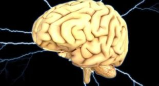 Are People Becoming Dumber? Reasons Behind Low Human IQ
