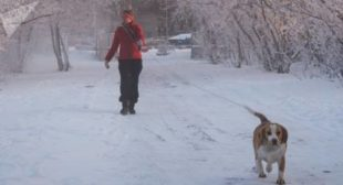How to Survive at Minus 60 Celsius (-76°F): Manual From Russia's Coldest Region (PHOTOS)