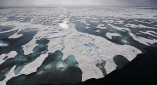 Last Year Hottest 'By Far': World's Oceans Top Temperature Records Again