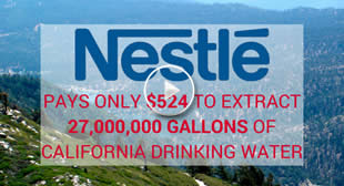 Chocolate Bunnies, Slave Labor, and Water Theft: The Horrible Nestle Story