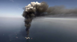 Breathtaking Ignorance: BP Suggests Ecological Catastrophe Good for Economy