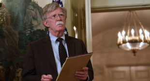 'First Chief of OPCW Said He Was Threatened by John Bolton' – Analyst