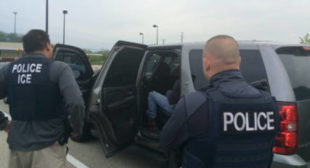ICE gearing up for war? US immigration agency runs assault rifle training, doubles M4 arsenal