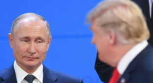 'I Honestly Feel Argentina Isn't Safe Place for Putin to Go' – Political Analyst