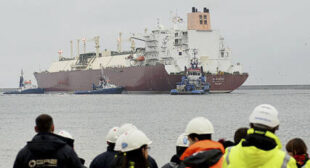 Customers Turn Down American LNG in Growing Numbers Amid Global Supply Glut, Traders Say