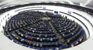 EU Parliament Faces Calls to Back Assange Amendment to Fundamental Rights Report