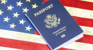 Nearly 1 in 4 American Expats Eye Renouncing US Citizenship Over Tax Requirements, Survey Finds
